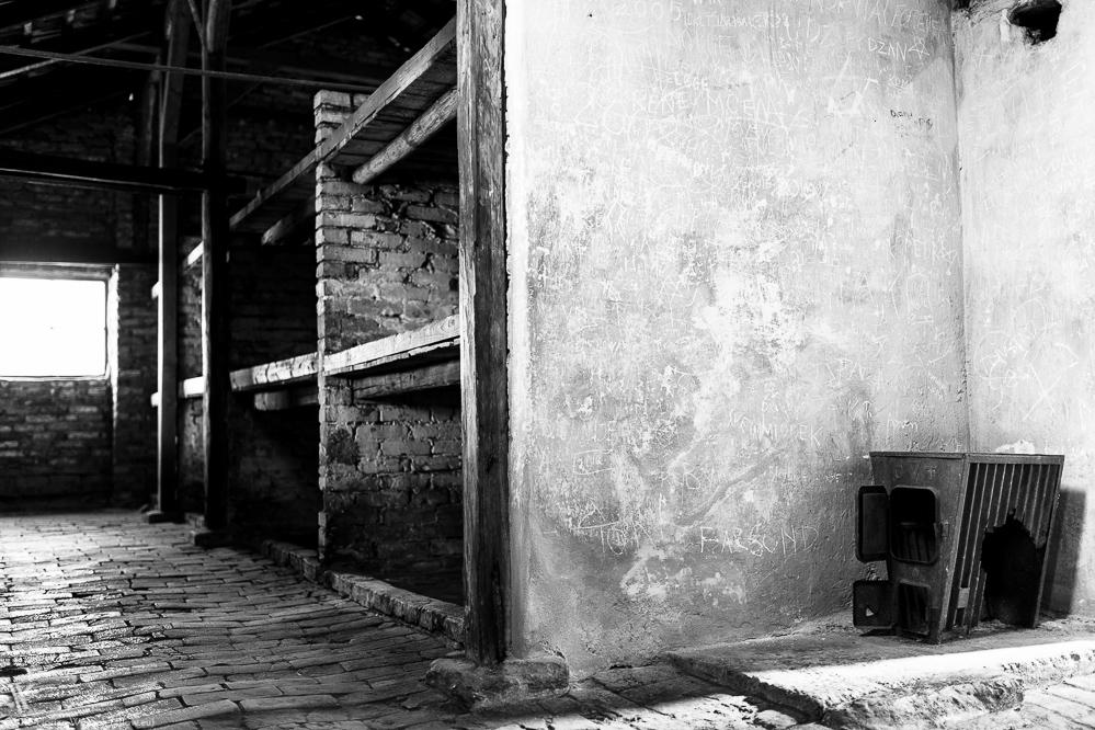 Auschwitz – Humans' darkest Side