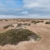 Namibia Skelettküste