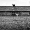 Vernichtungslager Auschwitz-Birkenau