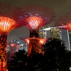 Super Trees, Gardens by the Bay