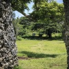 Tonga, Ha'amonga Trilith