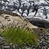 Leben am Gletscher