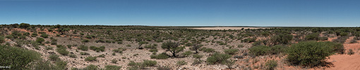 Botswana, Kalahari Transfrontier