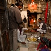 Indien, Rattentempel Karni Mata