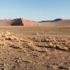 Namib Wüste