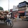 India, Jaipur