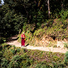 Tigernest Kloster Taktshang Bhutan