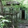 Chernobyl, Salisya
