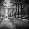 Berlin, Prenzlauer Berg, Metzer Straße, autumn walk