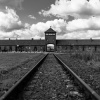 Auschwitz – Humans' darkest Side