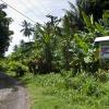 Papua-Neuguinea, Rabaul, Tavui, Sub Base